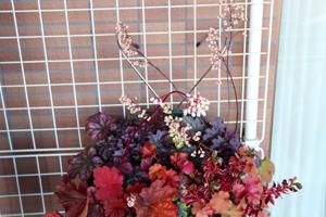 ヒューケラ 寄せ植え 花